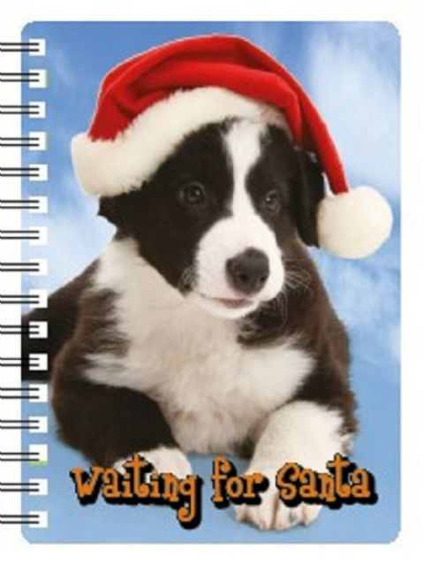 Border Collie waiting for Santa 3D Notebook Ideal Christmas stocking filler